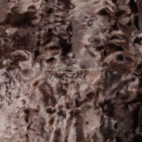 Тиацинт коричневый