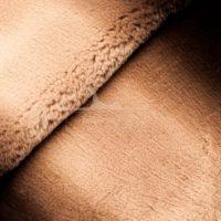 рекс коричневое де-граде стриженный