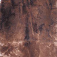 т.коричневый 19-0915